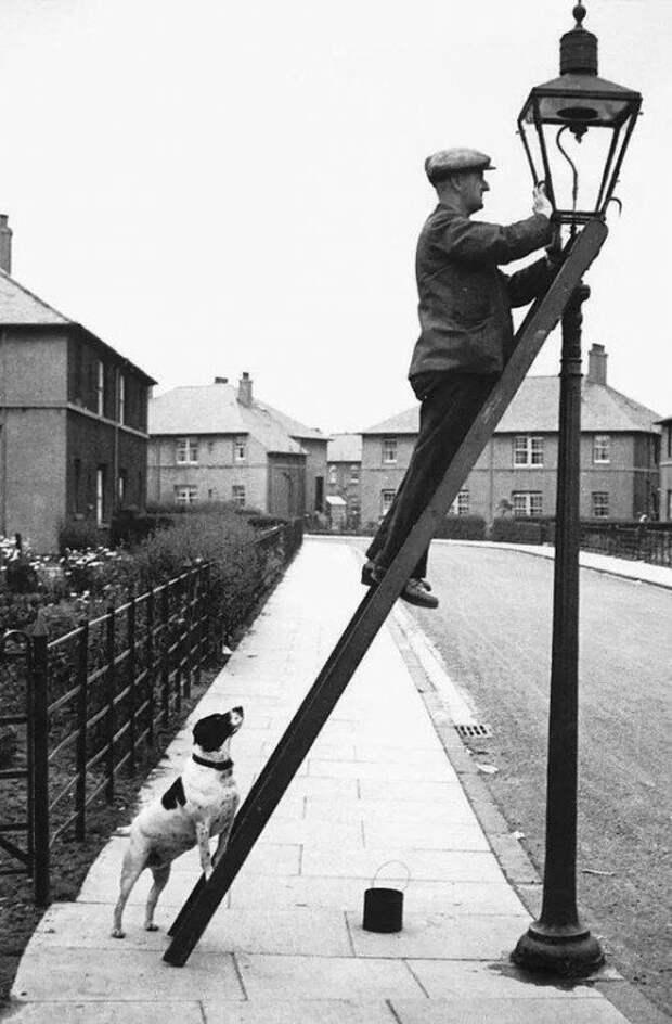 Фонарщик и его пёс на подстраховке. Шотландия, 1937 г. история, ретро, фото