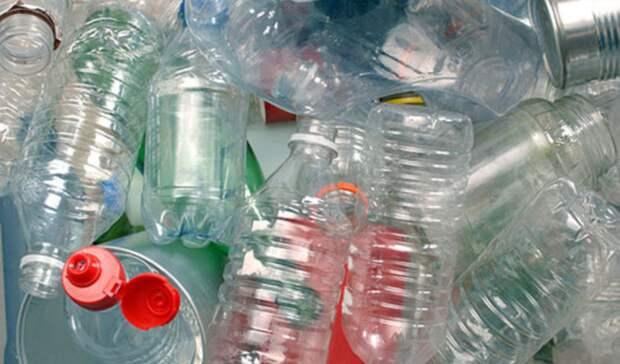 Запрет эффективнее переработки