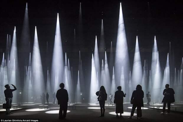 Инсталляция «Forest of Light»