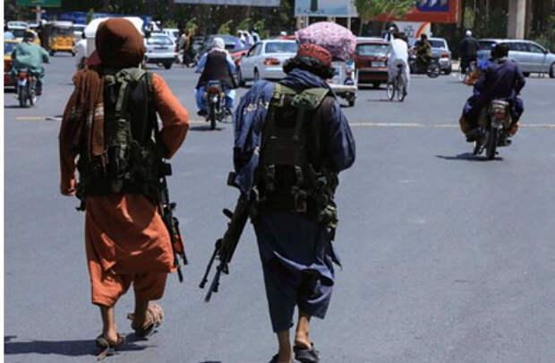 Политолог описал устройство будущего правительства «Талибана»