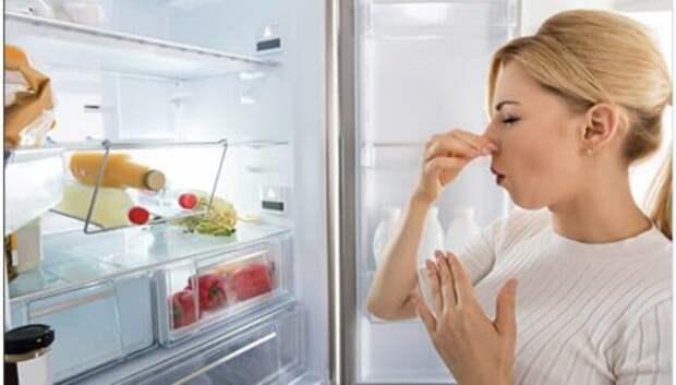 Безвредная плесень: Какие подпорченные продукты можно смело употреблять впищу