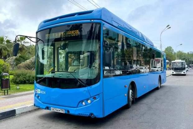 В Сочи тестируют работающие на газе автобусы