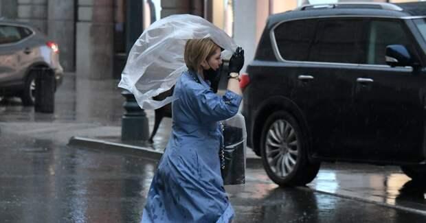 Синоптики призвали москвичей быть осторожными из-за сильного ветра
