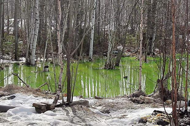 Озеро кислотно-зелёного цвета нашли в окраинах Нижневартовска