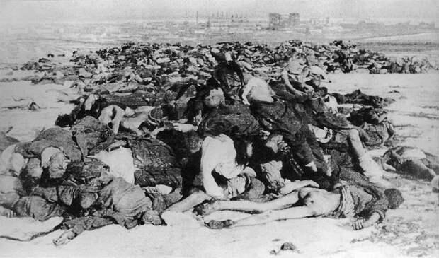 «Ампутация проведена под крикоином». Медицина в Сталинградской битве