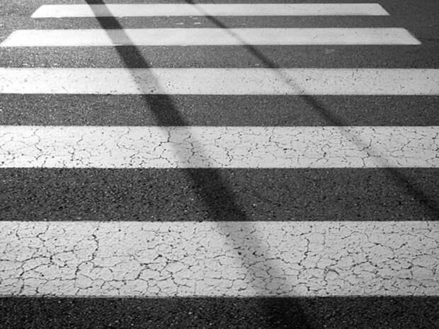 На водителя автобуса, задавившего ребенка на «зебре» в Химках, завели уголовное дело