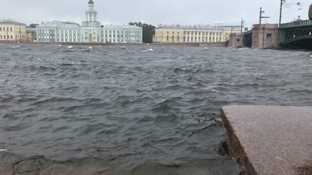 МЧС предупредило об ухудшении погодных условий в Петербурге 25 июля