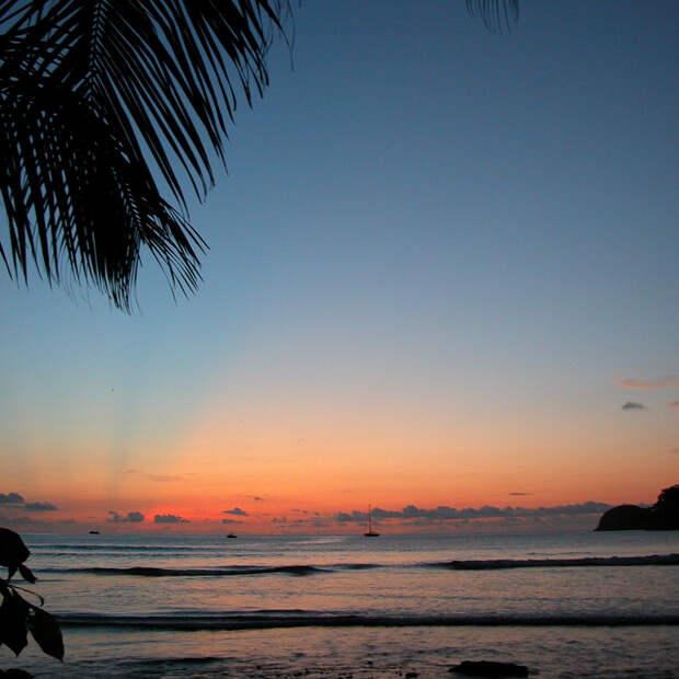 Кокосовый остров. Фото UNESCO / Marjaana Kokkonen