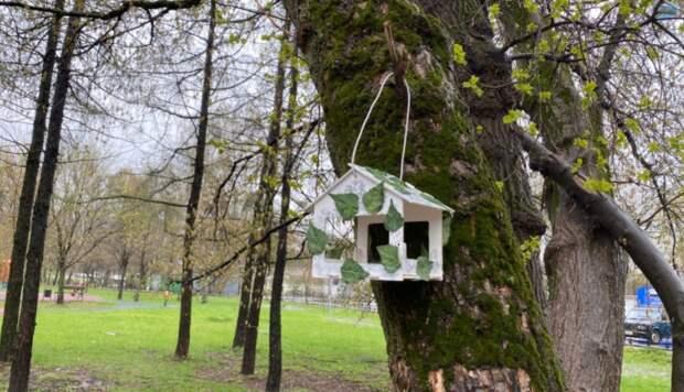 Фото дня: новые домики для птиц в Бабушкинском парке
