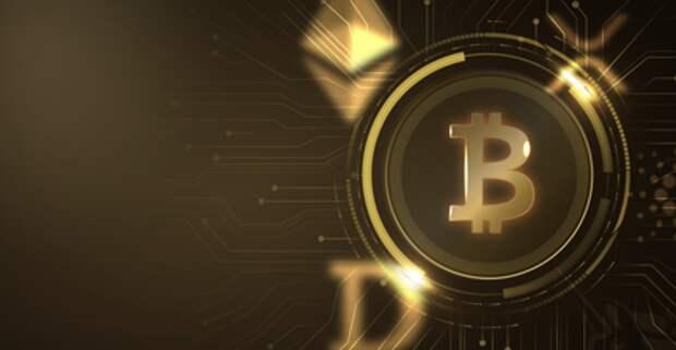 Эксперты криптоиндустрии дали советы новичкам