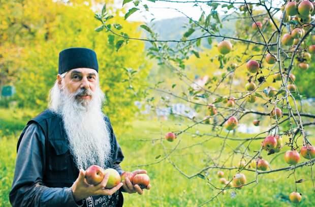 Вот как хранят яблоки валаамские монахи