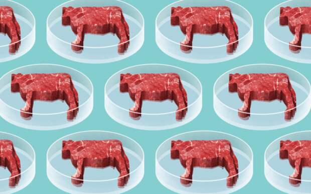 Сингапур первым в мире одобрил продажу искусственного мяса, выращенного отдельно от животных.