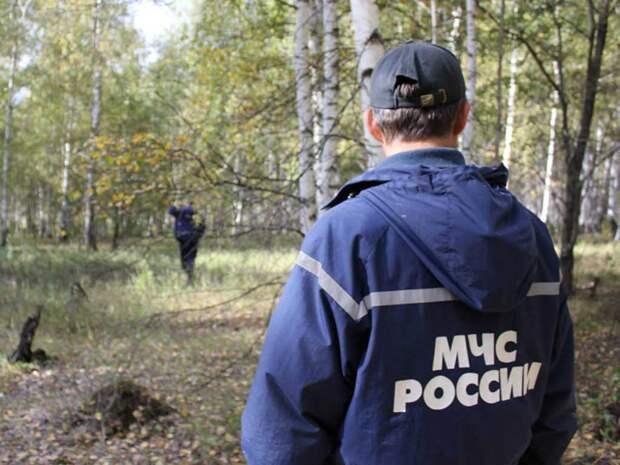 Российский министр пропал в лесу