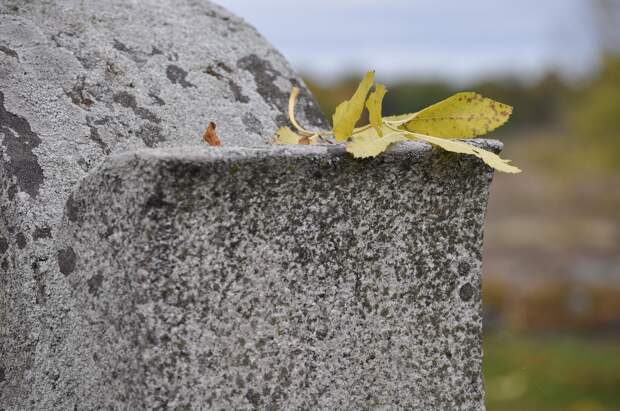 Мусульманское кладбище в Евпатории хотят превратить в каток