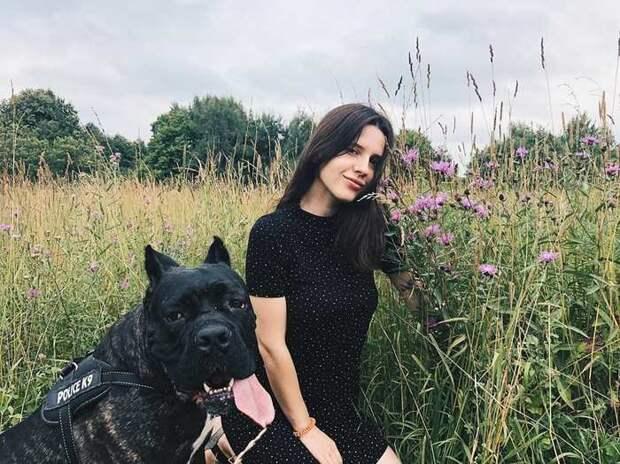 Соболь, не ставший шубой: девушка спасла зверя и рассказывает, каково жить с таким редким питомцем Соболи, Животные, Длиннопост