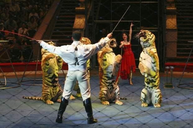 Полный пансион: российских цирковых животных начнут отправлять на пенсию в Крым