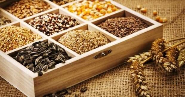 Условия хранения семян