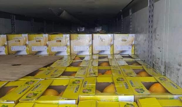 Россельхознадзор Оренбуржья проверил более 5тыс. тонн импортной продукции