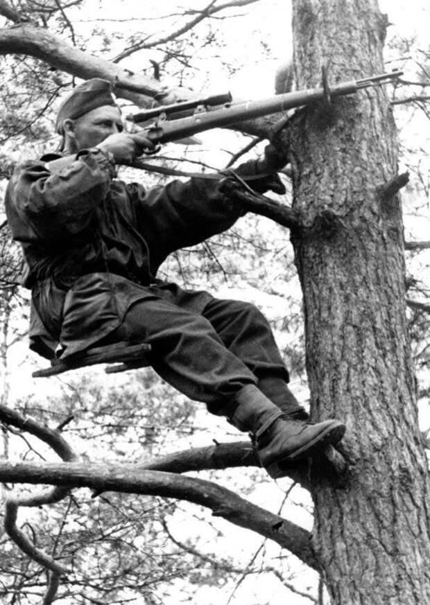 Дождался, когда фашист допьёт кофе, и выстрелил. История великого снайпера Василия Зайцева