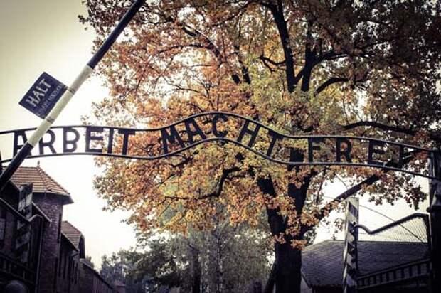 Ворота в Освенцим-Аушвиц. «Труд делает тебя свободным». Фото: pixabay.com