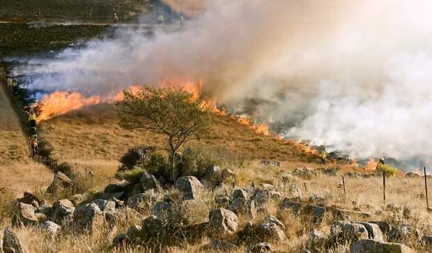Чрезвычайная пожароопасность ожидается наСтаврополье