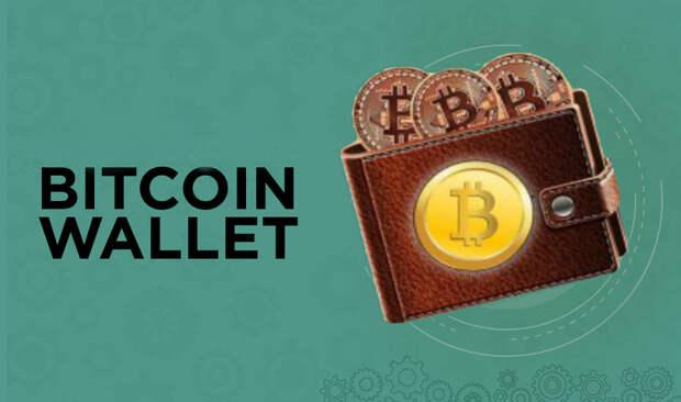 Надежные биткоин кошельки — Как и где хранить криптовалюту