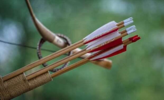 Ливрейная стрела: чем она отличается от «обычной»