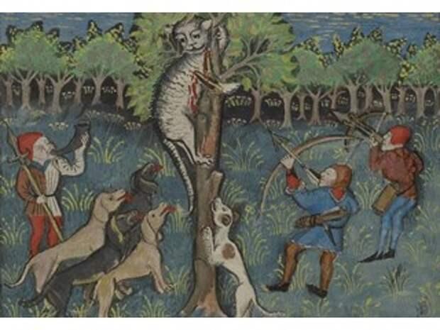 Кто устроил кошачий геноцид в средневековой Европе