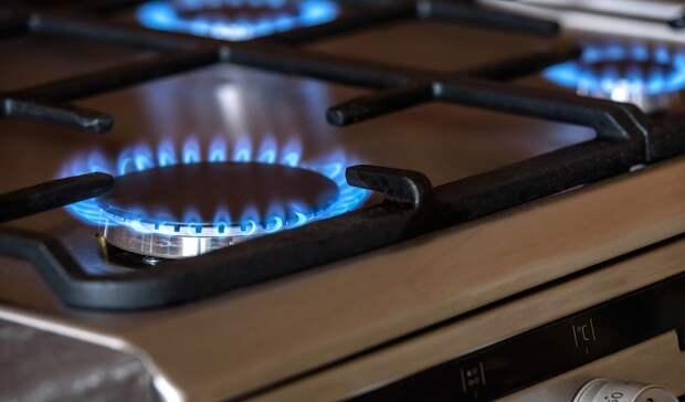 «Единая Россия» заявила онамерении добиться бесплатной для населения газификации