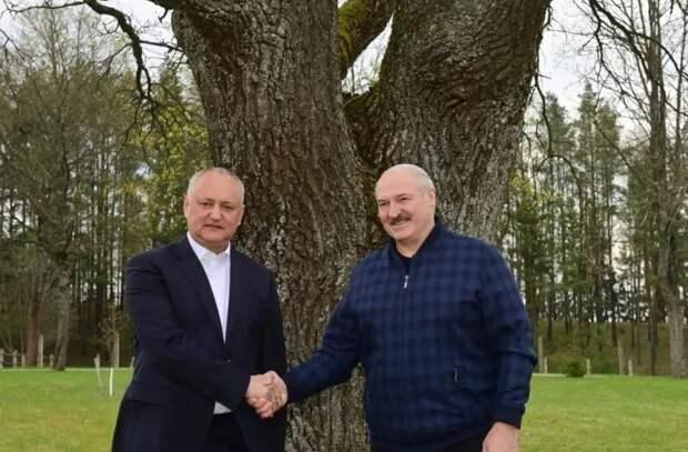 О чем говорилось на неформальной встрече Додона и Лукашенко