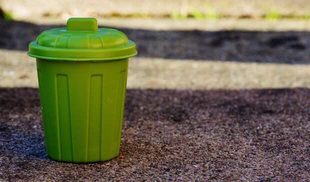 Ростовчане назвали способ защиты мусорных контейнеров отмассового уничтожения