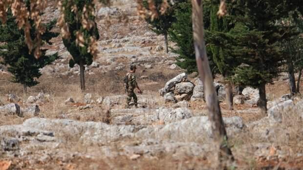 Правительственные войска Сирии ударили по позициям боевиков в провинции Идлиб