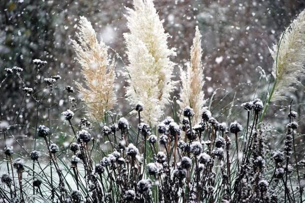 Мокрый снег ожидается в Удмуртии 23 марта