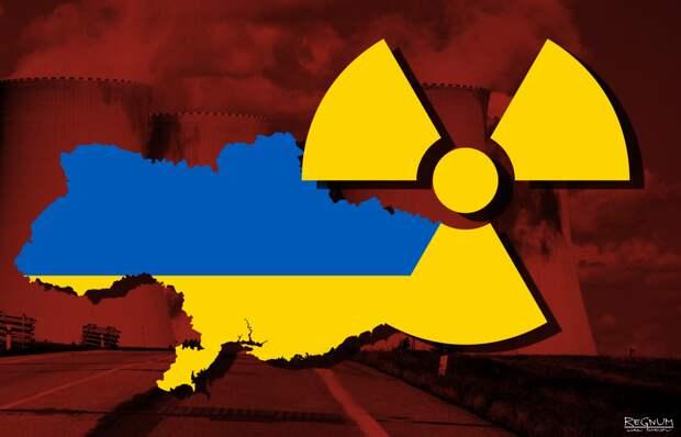 Владимир Карасёв: Ядерная Украина - это обезьяна с гранатой