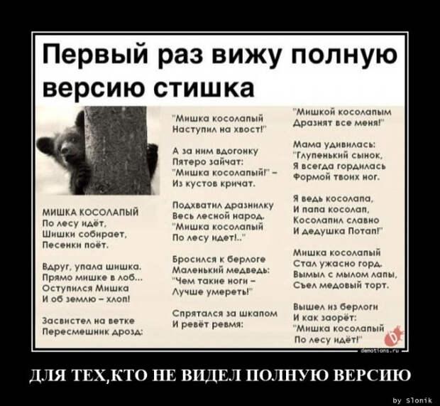 5402287_1612772962_demki4 (640x590, 99Kb)