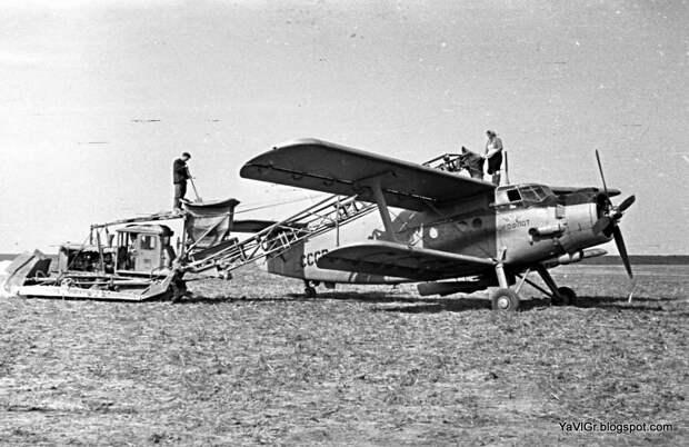 Картинки по запросу ан-2 СССР-43915