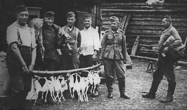 О венграх, которых под Воронежем не брали в плен