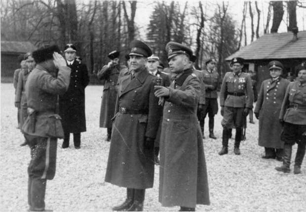 Офицеры РККА отдают честь фашистам. /Фото: waralbum.ru
