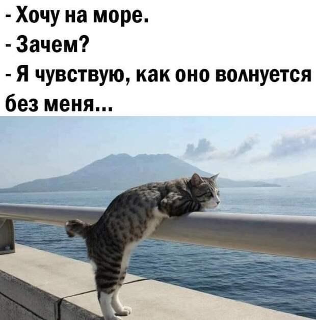 - Ты куда пошла? - В магазин!...