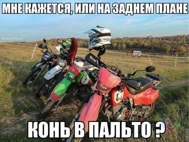 _YO_nyvjOBE