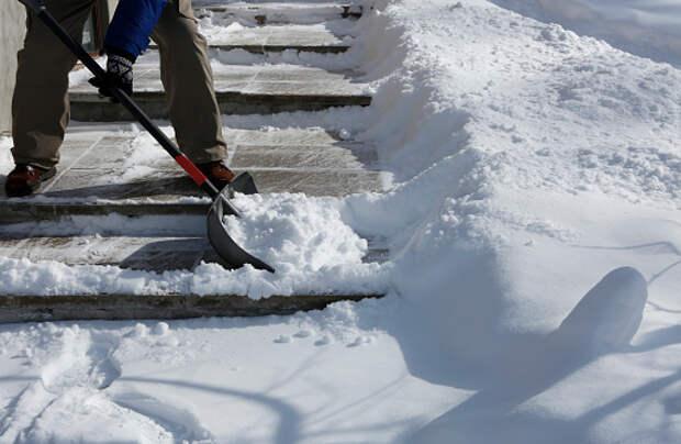 С территории двора на Ботанической убрали снежные завалы
