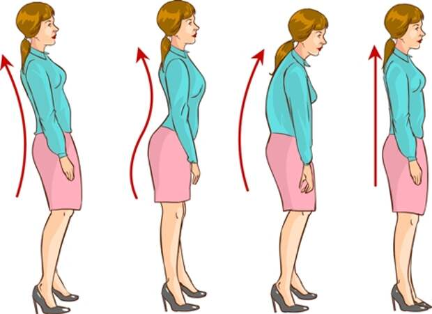 Топ-20 упражнений для улучшения осанки и выпрямления спины (фото)
