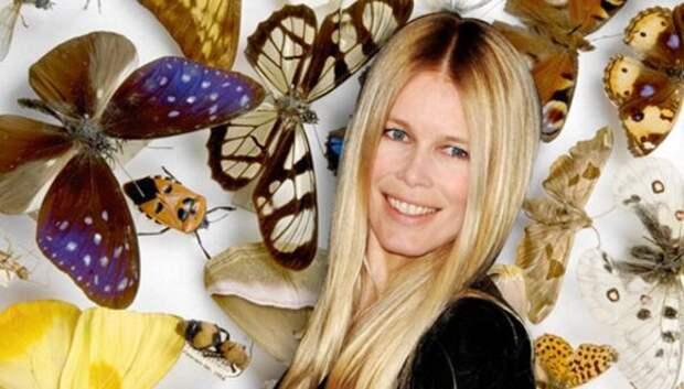 Коллекция насекомых Клаудии Шиффер и еще 14 тайных хобби знаменитостей