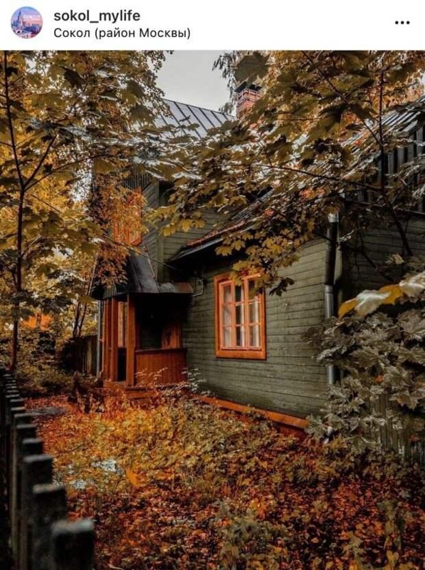 Фото дня: осенние краски в поселке Художников