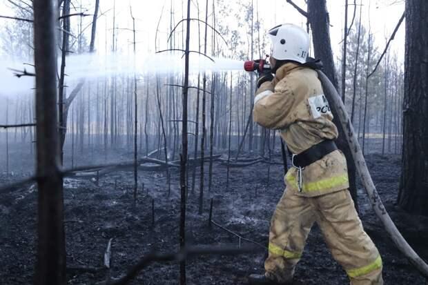 Пожарным и спасателям Удмуртии могут повысить пенсии с 2021 года