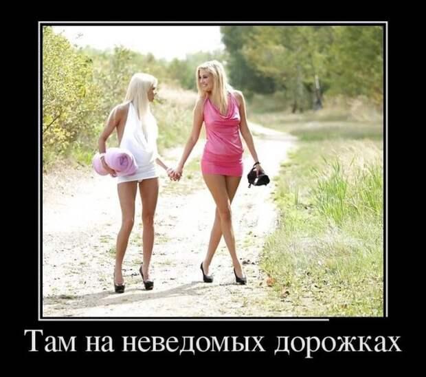 Демотиваторы смешные и веселые для хорошего настроения