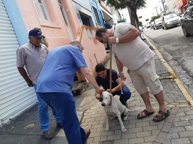 Люди и пес
