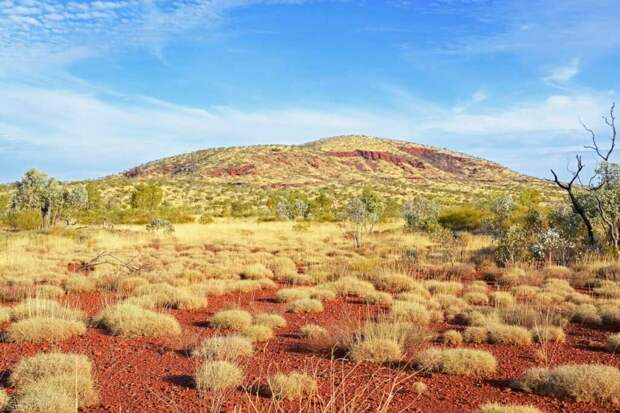 Путешественники, заблудившиеся в пустыне Австралии, выжили 5 дней без воды