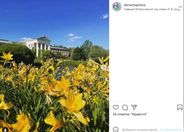 Фото дня: в Ботаническом саду распустился лилейник