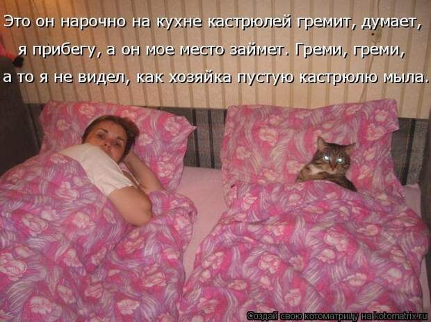 1451737586_kotomatricy-22